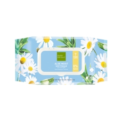 *Pro Mother Day* Aloe Moist Wet Tissue 100Sheets Baby Bright P