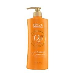 Shampoo 500ml Boya Q10 (Y2017)